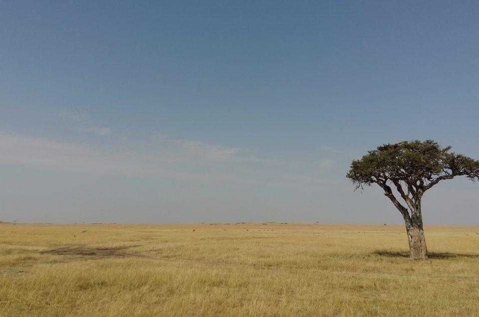 Tanzania's weather in general